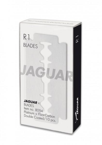 Jaguar R1M Klingen